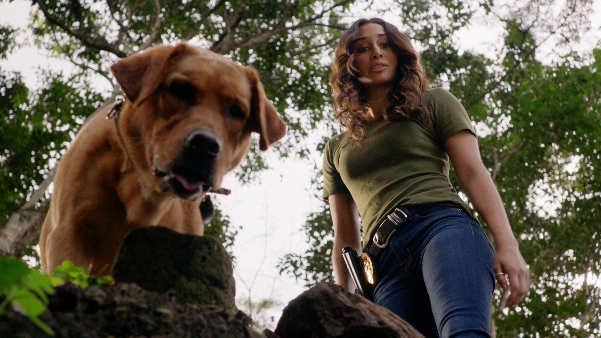 Meaghan Rath Blue Jeans, Michelle Borth Black Jeans- Hawaii Five 0 S08E20
