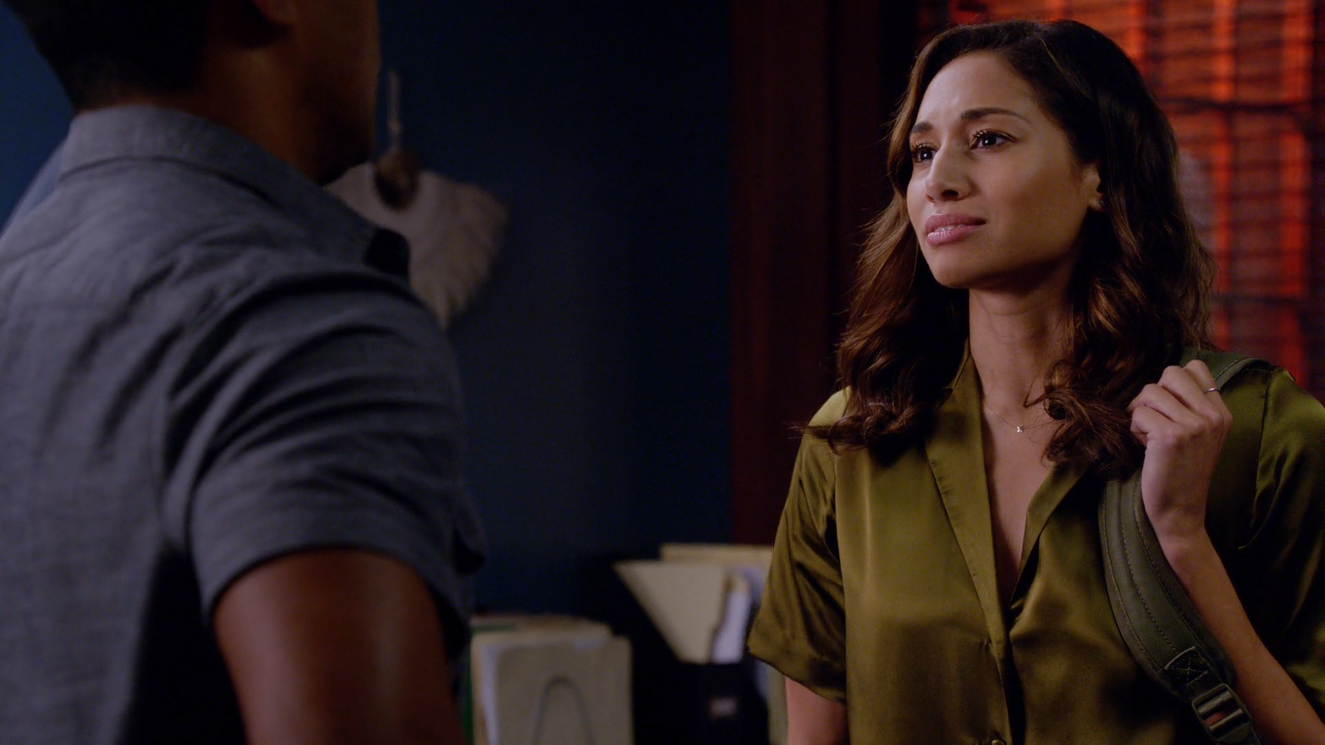Meaghan Rath- Hawaii Five – 0 S09E21-E22