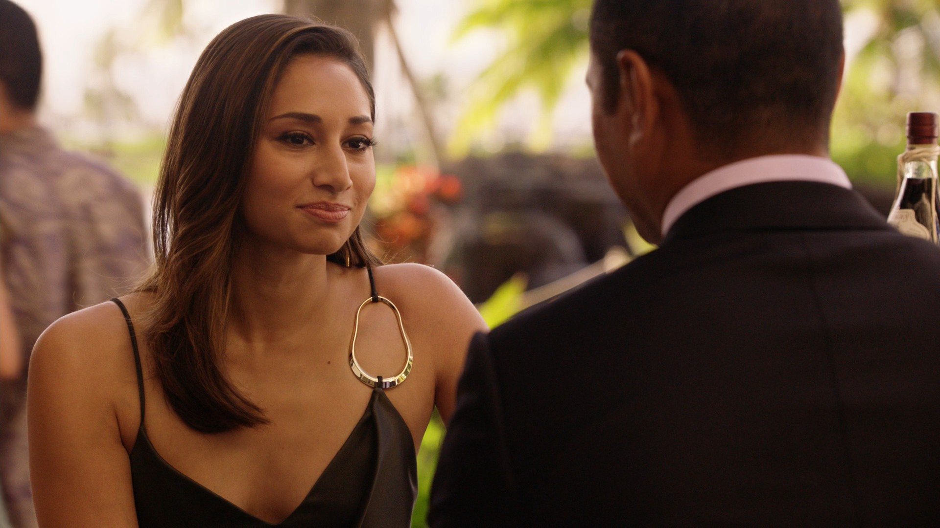 Meaghan Rath- Hawaii Five – 0 S09E23-E24